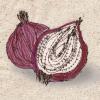 Decorative food illustration