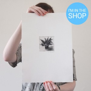 spiky potted plant monoprint sale